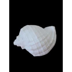 Flexible silicone shell mold