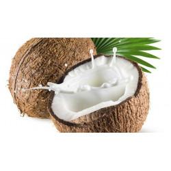 Coconut milk organic powder