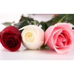 "Candles perfume ""Rose Bud"""