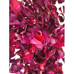 Dark pink petal roses