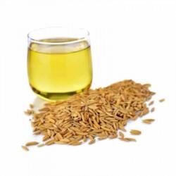 Rice Bran Carrier Oil