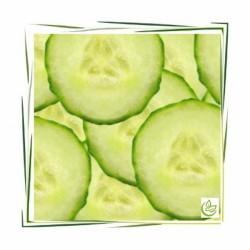 Perfume oil Cucumber