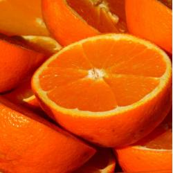 Orange Hydrosol Floral Water