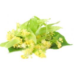 """Parfume oil """"Linden blossom"""""""
